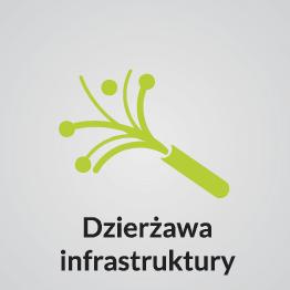 dzierzawa infrastruktury
